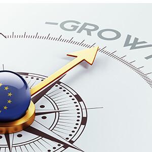 Waarom bedrijven niet groeien in Europa - Taal - Cultuur – Geduld